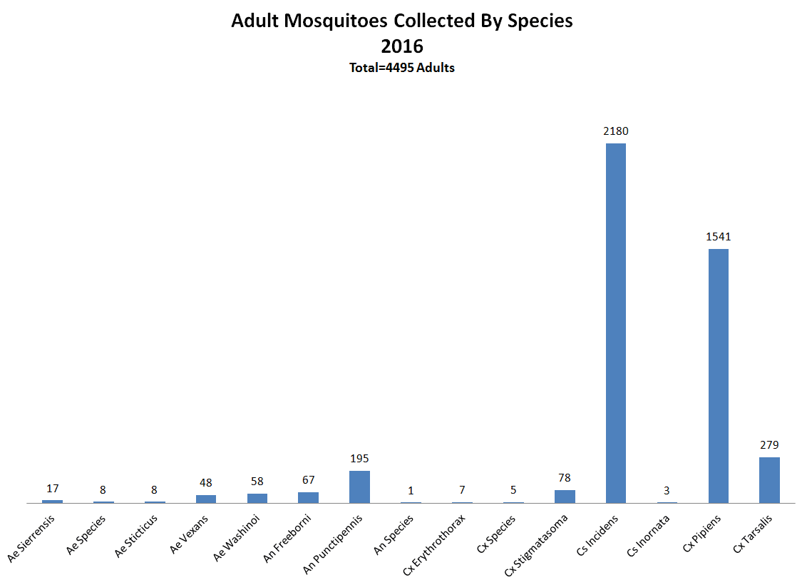 Adult Mosquitoes Collected By Species - 2016
