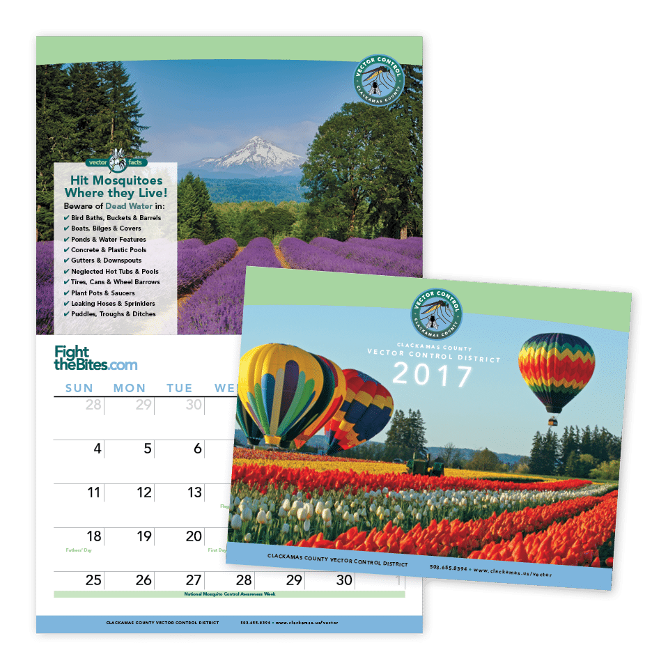 2017_calendar_graphic